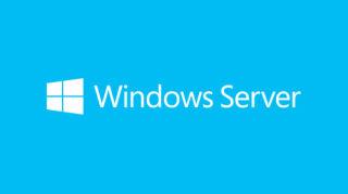 MS Windows Server Standard 2019 64Bit English 1 License DVD 16 Core License 5 Client (EN)